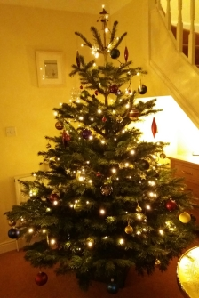 Christmas has arrived with the tree, perfect for curling up and write.